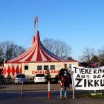 tiere raus aus dem zirkus
