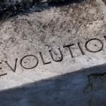 41. revolution